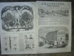 L�ILLUSTRATION 746 EMIGRATION CHINOISE/ EXPEDITION KABYLIE/ GAUCHO/ MONTBRISON