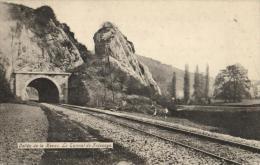 BELGIQUE - NAMUR - YVOIR - Vallée De La Meuse. Le Tunnel De Fidevoye. - Yvoir