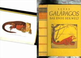 GALAPAGOS ENDE Der WELT William BEEBE Ekuador Equator Eqateur Ile Insel Amerique Sud America Amerika 1st  Edition 1926 ! - América