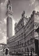 Cartolina SIENA - Palazzo Comunale e Torre del Mangia