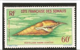 P A . COQUILLAGES DE LA MER ROUGE N°  31* Charnière - Unused Stamps