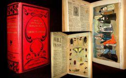 DICCIONARIO ENCICLOPEDICO ILUSTRADO De La LENGUA CASTELLANA Dictionary Dictionnaire Espagnol Castillan Rel. ENGEL 1913 ! - Diccionarios, Enciclopedias