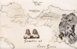 Netherlands Nieuw-Guinea PPC Groeten Uit Nieuw Guinea Deluxe BIAK 1961 Sent Nederland Bird Vogel Oiseau Stamp (2 Scans) - Papoea-Nieuw-Guinea