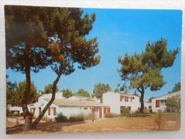 CP 17  LES  MATHES LA PALMYRE   - Les Trémières - Sonstige Gemeinden
