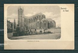 GAND: Cathédrale St Bavon, Niet Gelopen Postkaart  (GA14687) - Gent