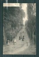 GRAMMONT: L'Escalier,  Gelopen Postkaart  (GA14929) - Geraardsbergen