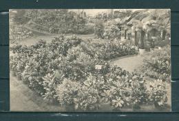 GAND: Floralies D'Eté, Niet Gelopen Postkaart (GA15525) - Gent