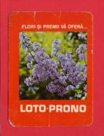 1558 Calendar Loto Prono 1981 Flori si premii va ofera