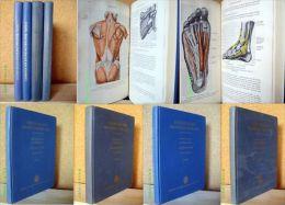"""""""LEHRBUCH DER KRANKENGYMNASTIK"""" MANUEL REEDUCATION Medecine Medicine Medizin Accident Massage Orthopedie Sport 1959/63 ! - Santé & Médecine"""