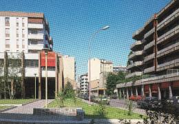 Cartolina CINISELLO BALSAMO (Milano) - Via Libertà (car / Cars / Voiture / Voitures / Auto / Macchine) - Cinisello Balsamo