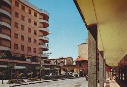 Cartolina CINISELLO BALSAMO (Milano) - Via Carducci - Cinisello Balsamo