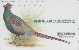 Télécarte Japon / 110-146776 - SAVE THE BIRDS - OISEAU FAISAN / Série 3 - 19/24 - PHEASANT Bird Japan Phonecard - 3182 - Gallinacés & Faisans