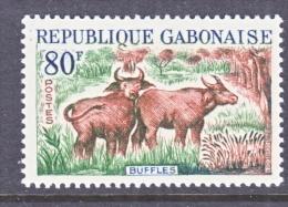 GABON  174  *     FAUNA  BUFFALO - Gabon
