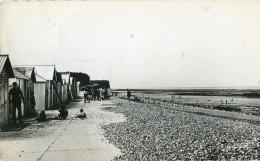 Saint Aubin Sur Mer La Plage - Frankreich