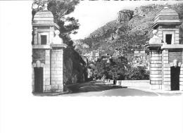 Monaco - Le 'Entree Du Rocher. Le Palais Du Prince Et La Tete De Chien - Monaco