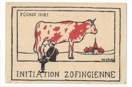 LV1694 - Initiation Zofingienne Füchse 1918 Carte Etudiant Vache Aux Couleurs Zofingienne - AG Argovie