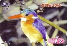 RARE Carte Prépayée Japon - Animal OISEAU MARTIN PECHEUR - KINGFISHER BIRD Japan Prepaid Card - EISVOGEL Quo Karte - 318 - Autres