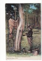Carte 1915 Résiniers Landais Récoltant La Gemme Et Incisant Les Pins Dans La Grande Forêt Domaniale - Unclassified