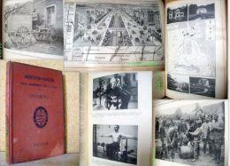 ASS. FR. Pour AVANCEMENT Des SCIENCES Peche Medecine Guerre WW1 Grd Paris Agriculture Aquaculture Vigne Yougoslavie 1916 - Sciences