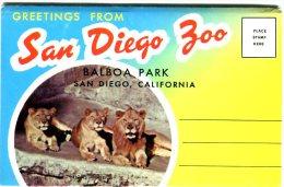 Carnet De Carte Du Zoo De San Diego - Tortue, Lions, Singe.... - Schildpadden