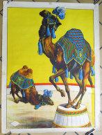 Affiche Cirque Circus ancienne avec Magnifiques Chameau et dromadaire 60X80 cms �diteur Aussel Paris