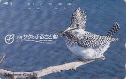 Télécarte Japon / 430-10346 - OISEAU MARTIN PECHEUR PIE & POISSON - PIED KINGFISHER Bird & FISH Japan Phonecard - 3217 - Non Classés