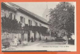 GAG-01  Château Des Allinges, Vue Du Midi, ANIME. Près De Thonon.  Non Circulé. - Other Municipalities