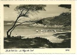 Ile De Port Cros (Var) : La Plage Du Sud - Hyeres