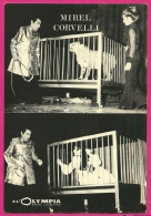 PHOTO Imprimée MIREL CORVELLI (MIRELDO) à L' OLYMPIA - CIRQUE CIRCUS MAGIE MAGICIEN Dresseur Dressage FAUVES Panthère - Non Classificati