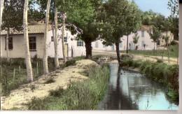 TAILLEBOURG: Colonie De St Delphin, Le Ruisseau - Frankrijk