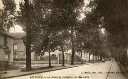 Antony La Route De Versailles Au Beau Site - Antony