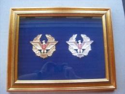 Médailles Italienne 34 Et 117 ème Régiment (encadrées) - Italia