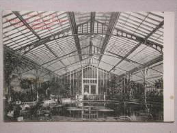 Frankfurt A. Main, Palmengarten. Da Neue Pflanzenschauhaus, Wasserbassins Mit Wasserpflanzen - Frankfurt A. Main