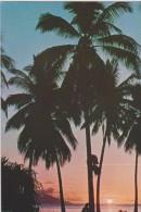 Polynésie Française ,TAHITI ,ile ,MOOREA,coucher De Soleil - Polynésie Française