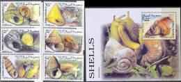 0271 Fauna Animals Snails 1999 Somalia 6+S/s Set MNH ** - Stamps