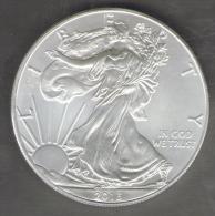 Stati Uniti 1 Dollar 2013 Silver Ag Liberty Silver Plata Eagle Silber Once Onza Oncia Unze - Argento