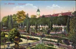AK - Mainau - Rosengarten - Allemagne