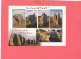 56- CARNAC Alignement De Menhirs Du Menec Et De Kermario, Multivues - Carnac