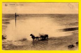 WATER SLAAT OVER DE DIJK BIJ STORM OOSTENDE  COUP DE LAME ATTELAGE CHEVAL TEMPETE PAARD SPAN KOETS LITTORAL Ramp 3653 - Inondations
