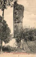 D65  CASTELNAU RIVIERE BASSE  Ruines du Donjon carr� du XI� si�cle   .....