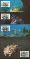 Antigua & Barbuda 1987 WWF Fische 1010/13 Maximumkarten (R2314) - Antigua Und Barbuda (1981-...)