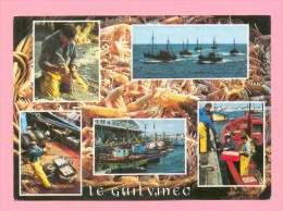 CPM  FRANCE  29  -  GUIVINEC  -  9480  Rentrée De Pêche  ( En 1993 )  Animée - Guilvinec