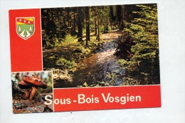 Carte Sous Bois Champignon Flamme Muette Etival - Ohne Zuordnung