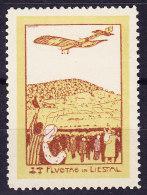Flugpostmarke 1913 Vorläufer Zu# VIII Flugtag In Liestal - Poste Aérienne