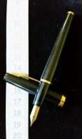 Stylo Plume Or Waterman N°2 - Stylos