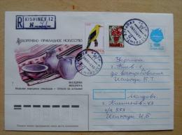 Cover Sent From Moldova 1992, Registered Kishinev Postal Stationery USSR Mixed Stamps Bird Oiseaux Overprint Grapes 0,70 - Moldavia