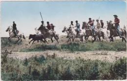 Camargue,cardians Emmenant Un Taurreau à La Ferrade,et Tampon La Rome Française,rare,bouches Du Rhone,13 - Arles