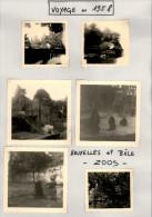 Voyage D´une Nantaise En 1958 - Zoos De Bruxelles Et Bâle - Ours - Orte