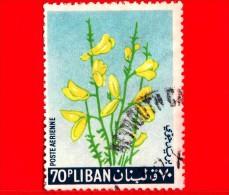 LIBANO - Libanon - 1964 - Fiori - Piante - Ginestra - Broom - 70 - Libano