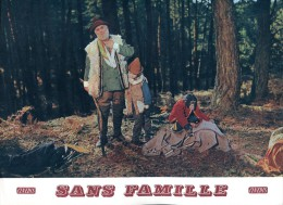Photo Du Film : Sans Famille - Posters